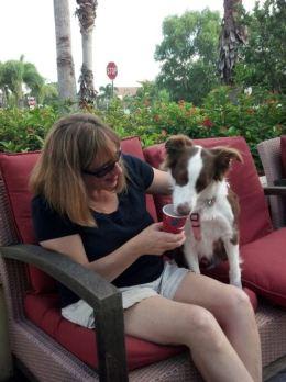 Joy Loves Her Puppy Lattes!